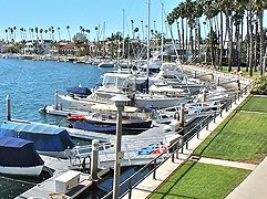 Long Beach - Sue LaBounty